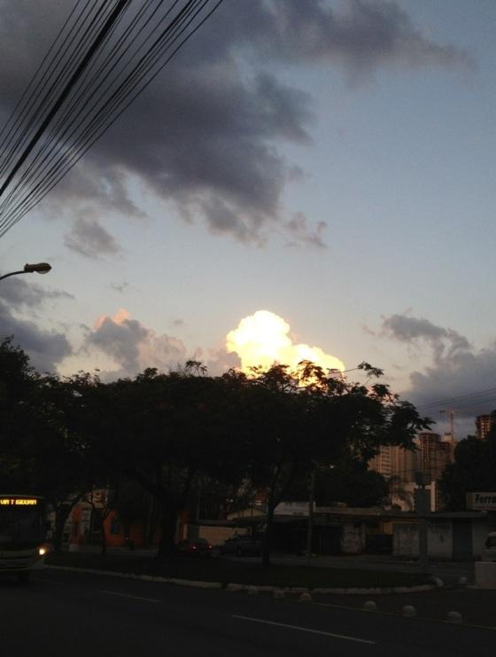20121124-095125.jpg